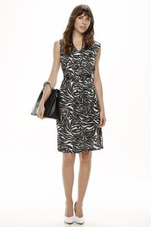 Vestido-Zebre-Neon-08.18.005916301